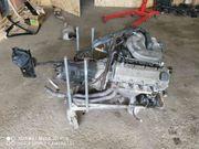 BMW E36 316i Motor mit