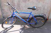 Fischer Montain Bike 26 Zoll