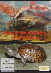 Moschusschildkröten Haltung Pflege und Zucht