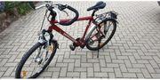 Bergamont Mountainbike