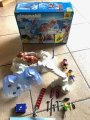 Playmobil Großer Dinosaurierfund 3170