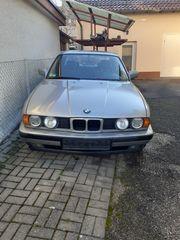 BMW E 34 525i mit