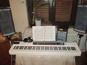 Stage-Piano Modell Studiologic Numa mit