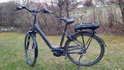 VICTORIA E-Bike Deep 28 3