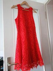 Schönes Kleid von Frogbox Gr