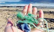 Super Nebenjob zu vergeben - Plastikmüll