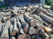 Brennholz - Hartholz Eschen ausgesuchte beste