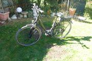 E-Bike Pegasus Strong E-9 Unisex