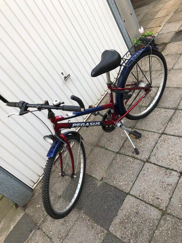 Kinder Jugend Fahrrad Pegasus - Quality