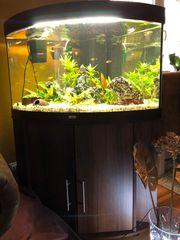 Aquarium 190l Komplettset