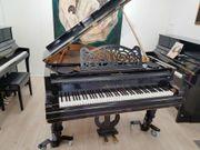 Bösendorfer Flügel - Originalzustand -Unrestaurietes Instrument