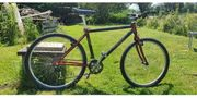 Mountainbike Trek vintage carbon