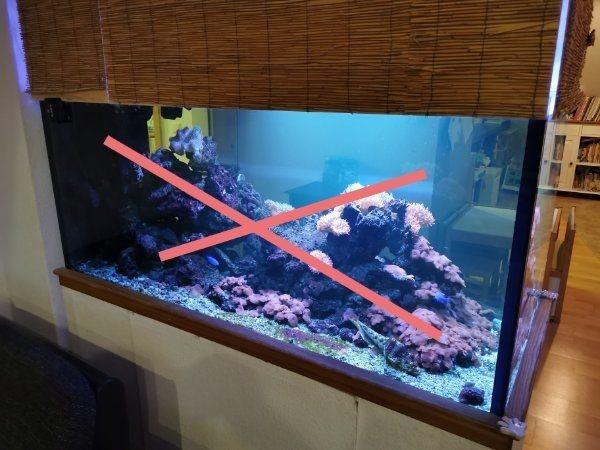 Meerwasser Aquarium 800l 160x70x70 Poolbecken