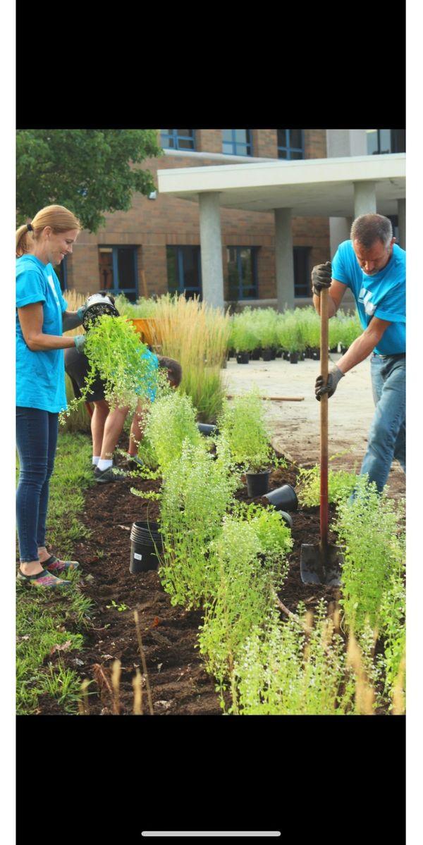 Wir bieten Gartenarbeit an