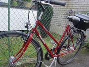 Gebrauchter Campus Damenrad 21Gg rot
