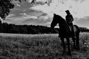 Erfahrene und zuverlässige Reiterin sucht