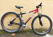Mountainbike Hardtail 29 Zoll Top
