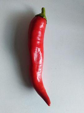 Diverse Gemüsesamen zu verkaufen Chili: Kleinanzeigen aus Hamburg Langenhorn - Rubrik Pflanzen
