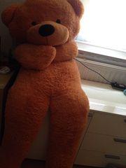 1 70 Meter großen Teddybär