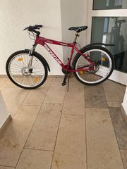 Fahrrad MTB