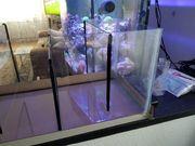 Meerwasser Tecknikebeken Filterbecken