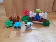 Lego Duplo Entenfütterung Nr 10581