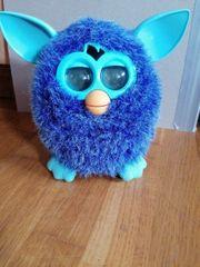 Furby Sucht gutes Zuhause