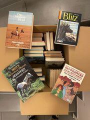 zu Verschenken Bücherkiste mit Pferdegeschichten