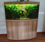 Komplettes Aquarium mit Unterschrank und