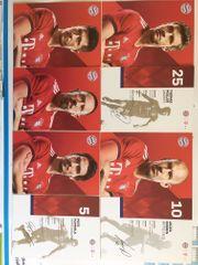 1 x Komplettdruckautogrammkartensatz FC BAYERN