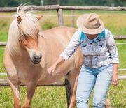 Seminar mit Pferden Entfalte dein