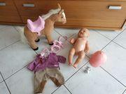 Baby Born Puppe mit Pferd