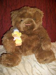 Teddybär Wuschel