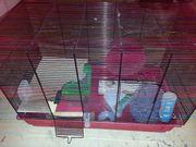 Mäusekäfig