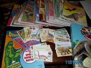 Sammlung Dinosaurierhefte