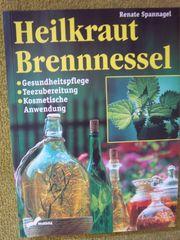Heilkraut Brennnessel