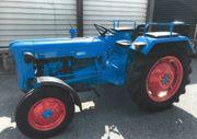 Schöner Fordson Dexta Oldtimer Traktor