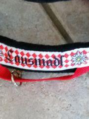 Hund Halsband