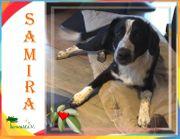 SAMIRA - Ich bin eine liebe