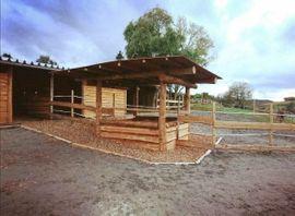 Offenstall in Lehrensteinsfeld unter neuer: Kleinanzeigen aus Lehrensteinsfeld - Rubrik Pferdeboxen, Stellplätze