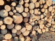 Holz Brennholz Stammholz
