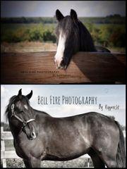 Hobbyfotografin sucht Modelle