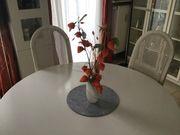 Esszimmer-Stühle 6 Stück