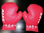 Boxhandschuhe ALEX 8 OZ Kinder