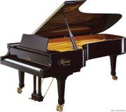 Musik für Ihre Feier Klavierhintergrundmusik