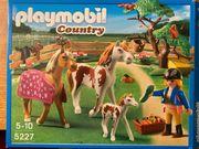 Playmobil 5227