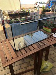 Glas Aquarium Suß Meerwasser 80x35x40
