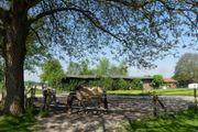 2 Pferdeboxen frei