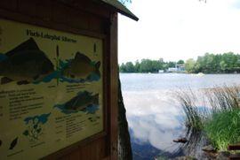 Ferienhäuser, - wohnungen - Urlaub im Blockhaus am Silbersee