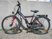 Fahrrad PEGASUS Avanti 26